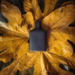 parfume 150x150 - İletişim